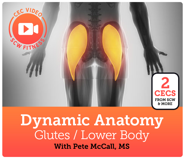 Cec Video Course Dynamic Anatomy Glutes Lower Body Scw Fitness